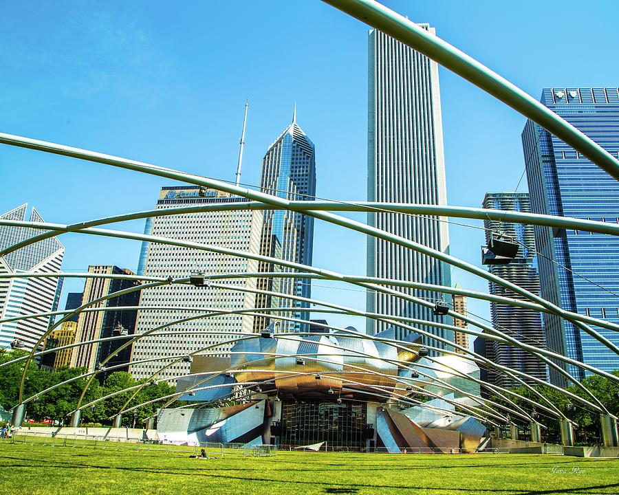 Chicago 7948 by Jana Rosenkranz