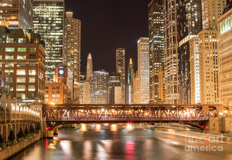 America Photograph - Chicago by Juli Scalzi