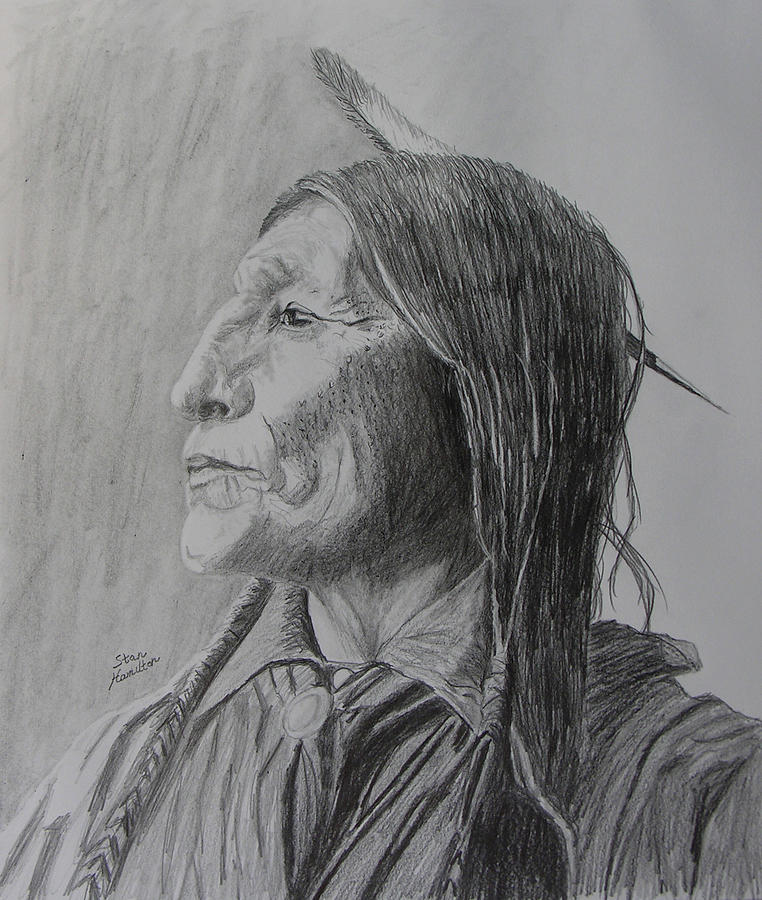 Indian Drawing - Chief Wolf Robe by Stan Hamilton