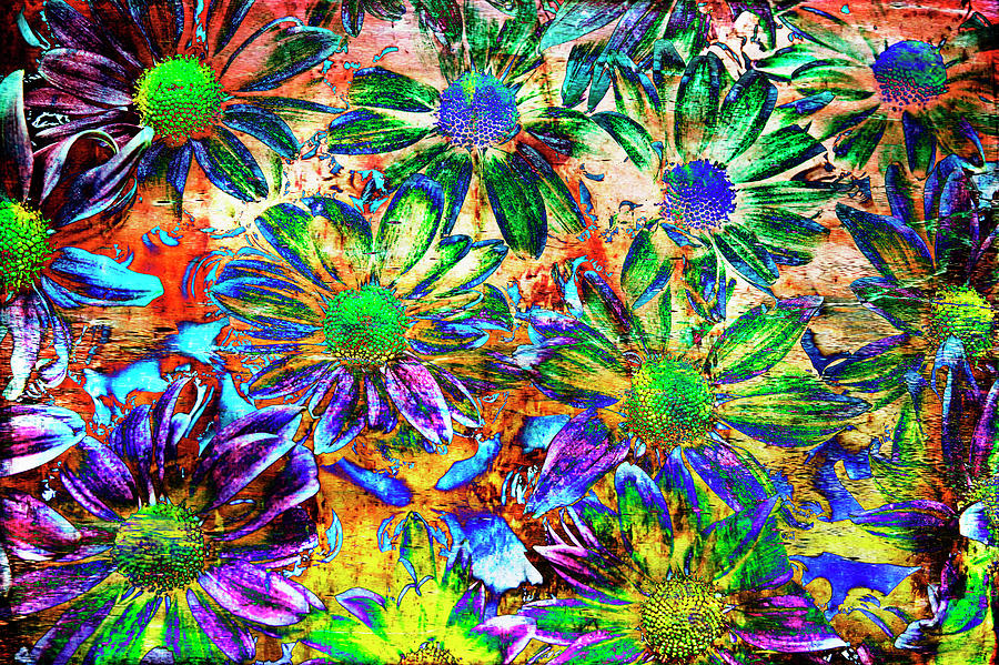Psychedelic Photograph - Chrysanthemums by Skip Nall