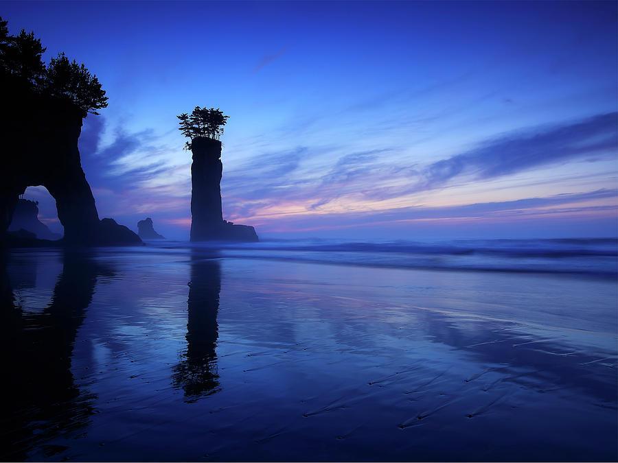 Coastline Digital Art - Coastline by Dorothy Binder