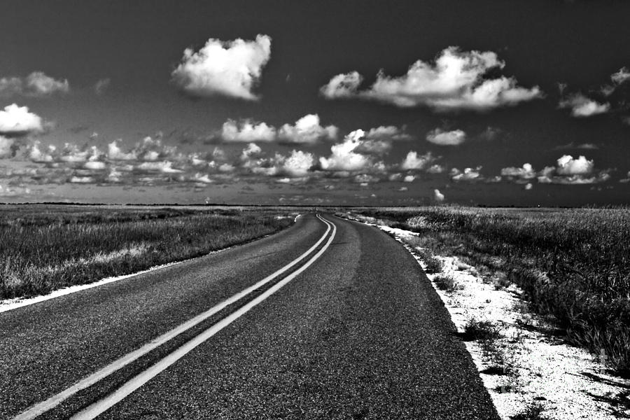 Road Photograph - Cocodrie Highway by Scott Pellegrin