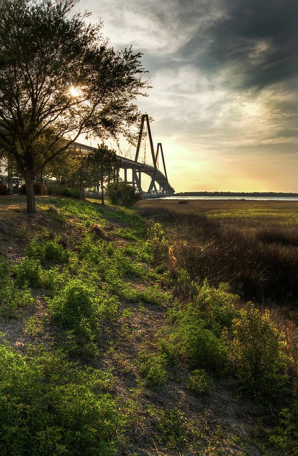 Cooper River Bridge by Douglas Tate