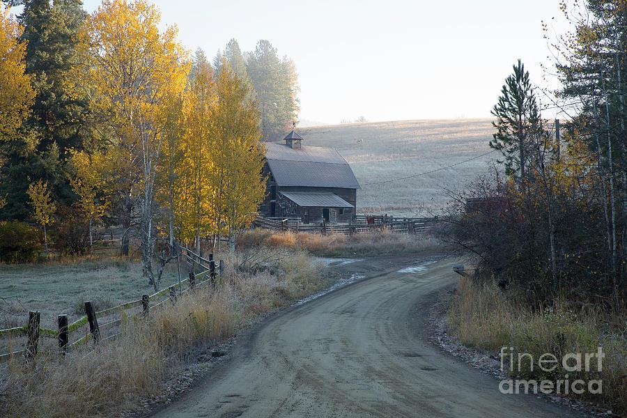 Idaho Photograph - Country Morning by Idaho Scenic Images Linda Lantzy