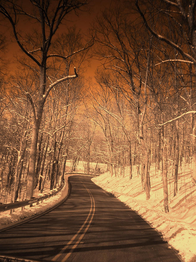 Country Photograph - Country Road by Martie DAndrea