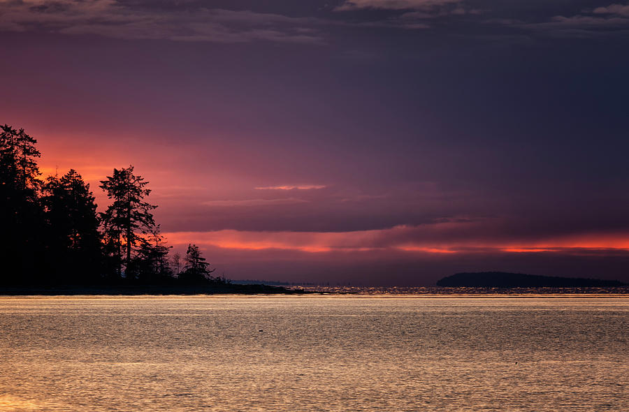 Silhouette Photograph - Craig Bay Sunset by Randy Hall