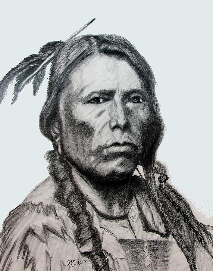 Indian Portrait Drawing - Crazy Horse by Stan Hamilton