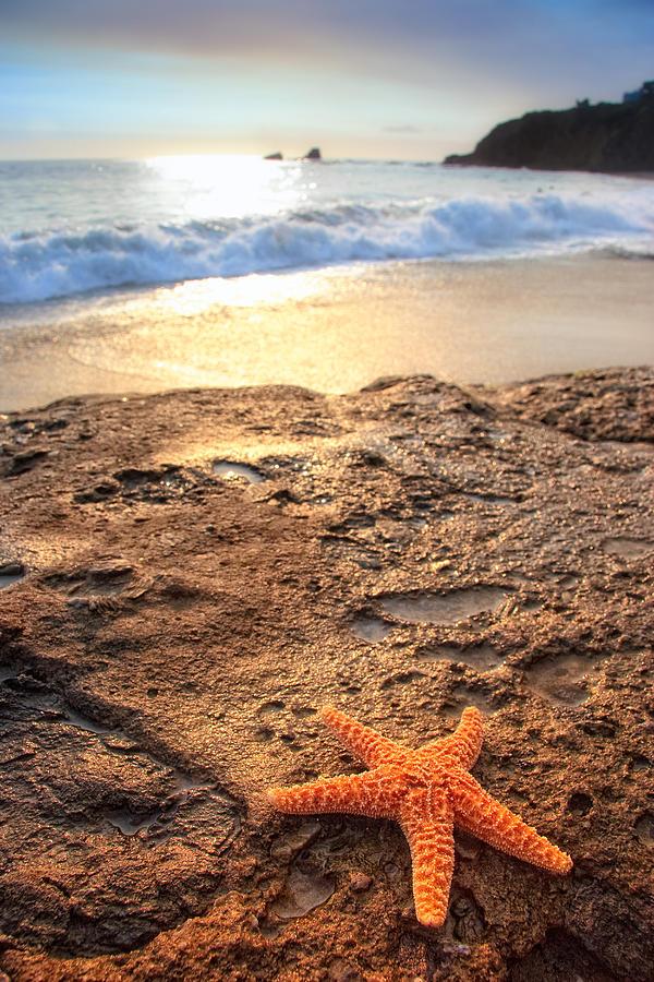 Scenery Photograph - Crescent Bay Laguna Beach California by Utah Images
