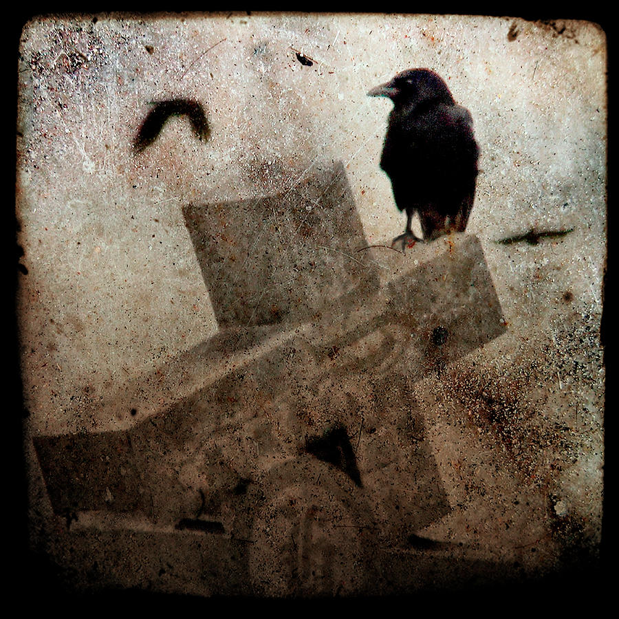 Crow Photograph - Cross With Crow by Gothicrow Images