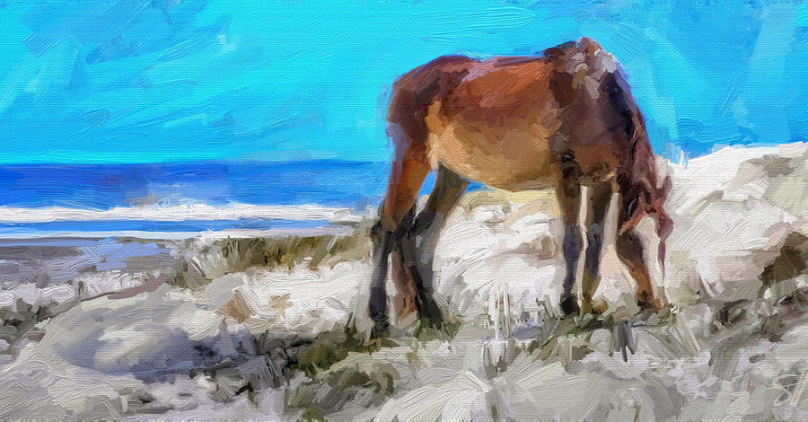 Cumberland Pony Digital Art by Scott Waters