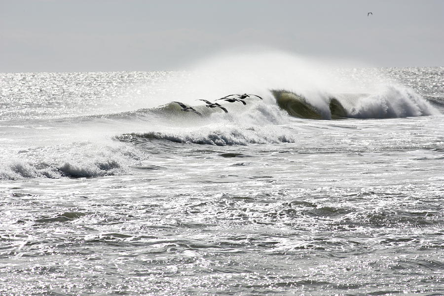 Waves Photograph - Dawn Patrol by Bev Veals