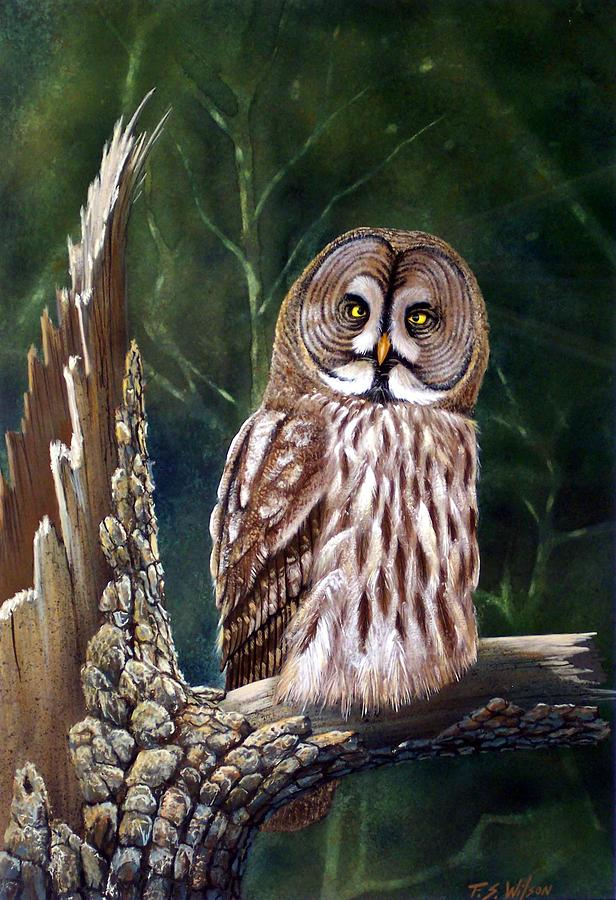 Wildlife Painting - Deep In The Woods by Frank Wilson