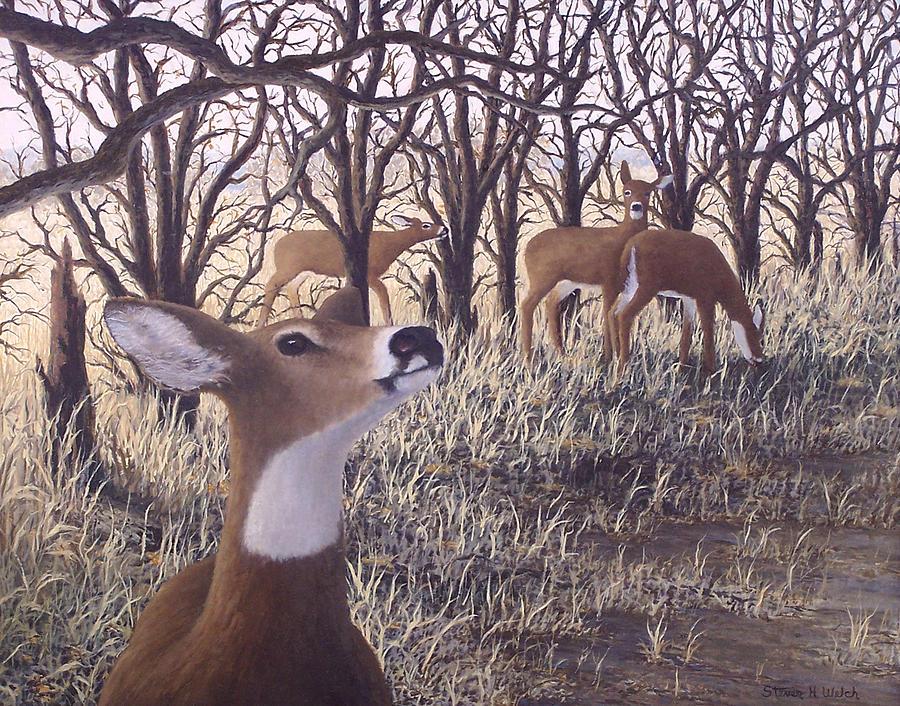 Deer Painting - Deer Heard by Steven Welch