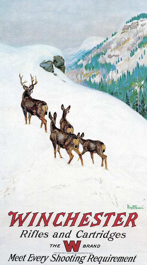 Deer In Snow by Philip R Goodwin