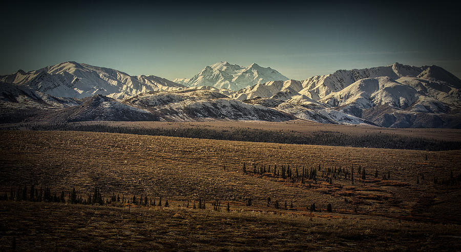 Denali  by Chris Multop