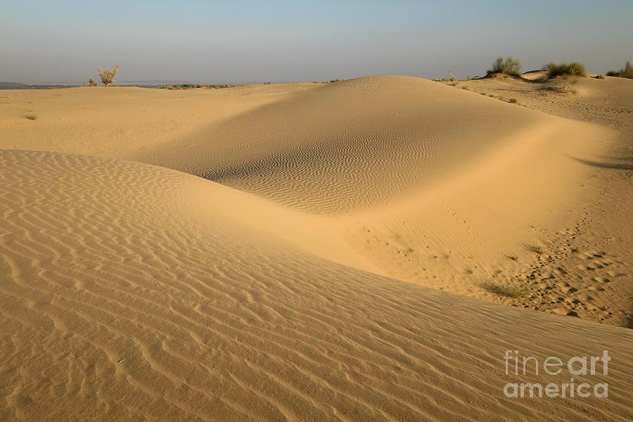 Desert by Yew Kwang