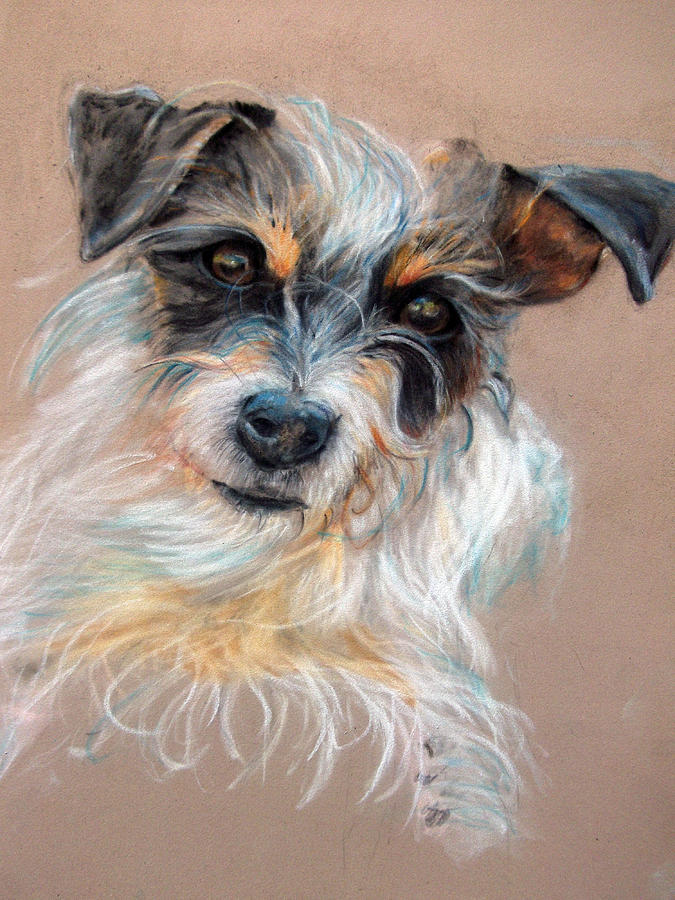 Dog Painting - Dextor by Tanya Patey