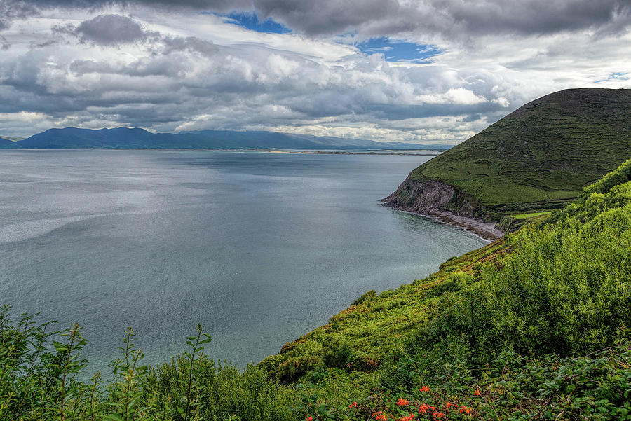 Dingle Bay by Elvis Vaughn