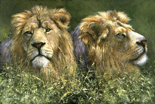 Lions Painting - Double Trouble by David Lyons