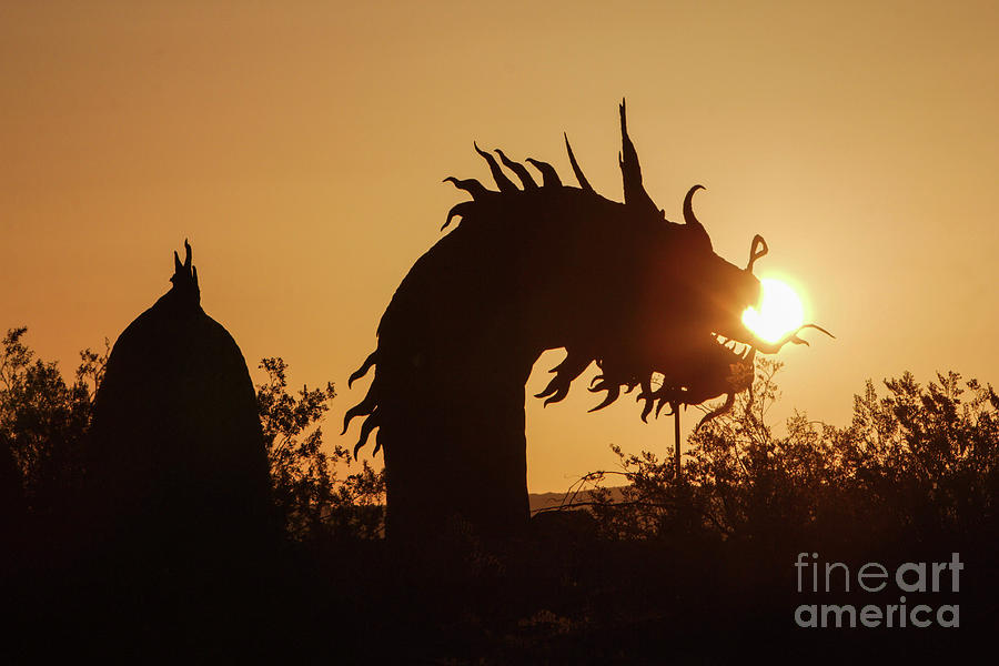 Anza Borrego Desert Photograph - Dragon At Dawn by Caroline Jeanine