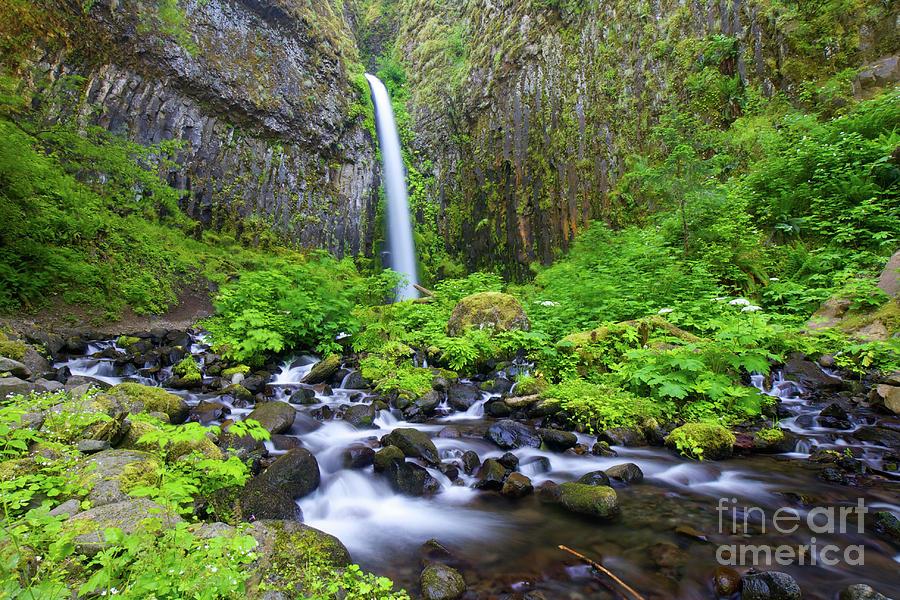 Waterfall Photograph - Dry Creek Falls by Bruce Block
