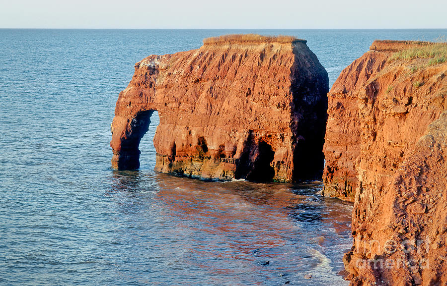 Rock Photograph - Elephant Rock by Lionel F Stevenson