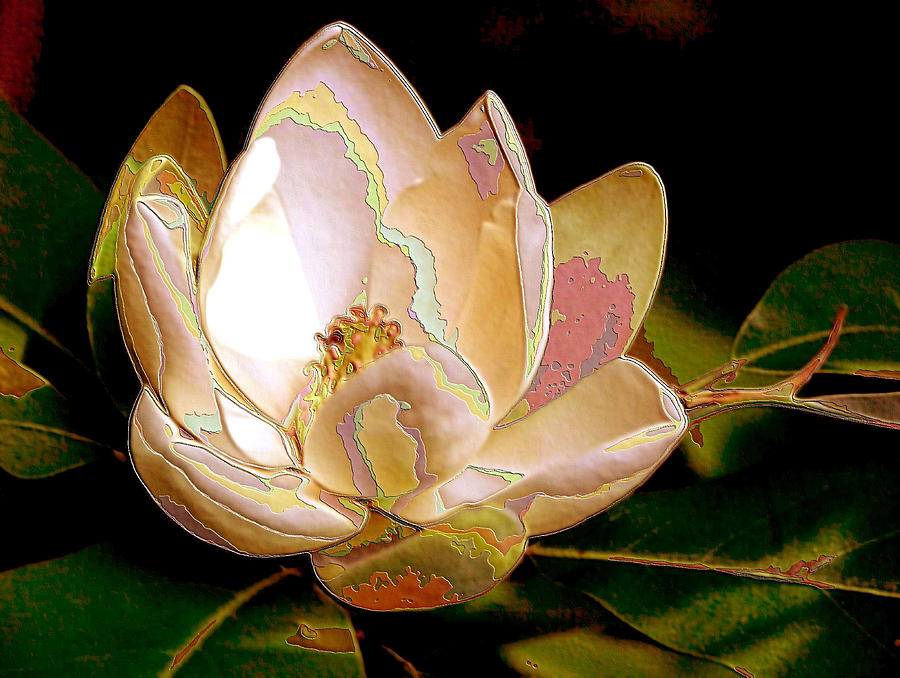 Enamel Magnolia by Carolyn Jacob