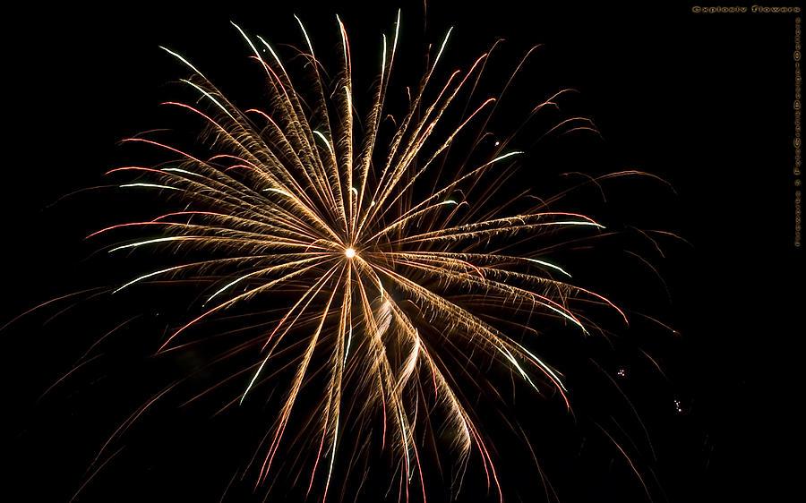 Fireworks Photograph - Explosive Flowers 5 by Heinz - Juergen Oellers