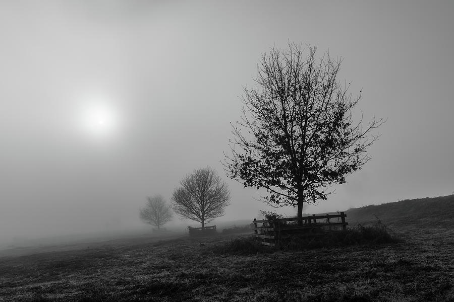 Fog Photograph - Fading Away by Nick Bywater