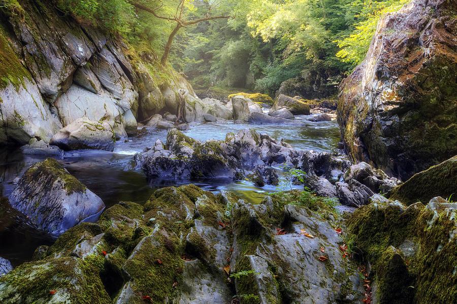 Fairy Glen Photograph - Fairy Glen - Wales 1 by Joana Kruse