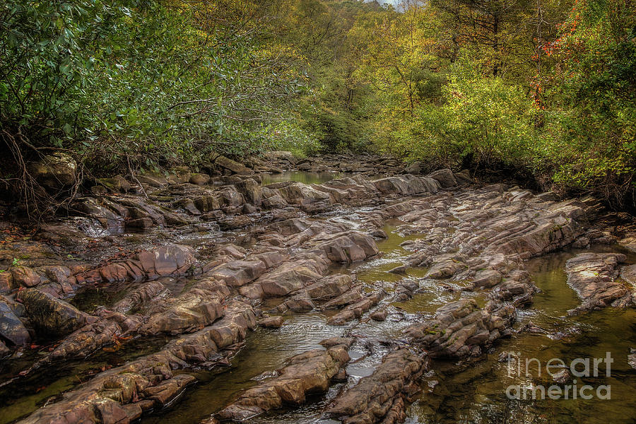 Fall at Fane Creek by Larry McMahon