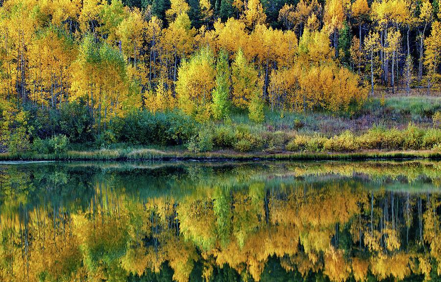 Fall Photograph - Fall Reflections by John De Bord