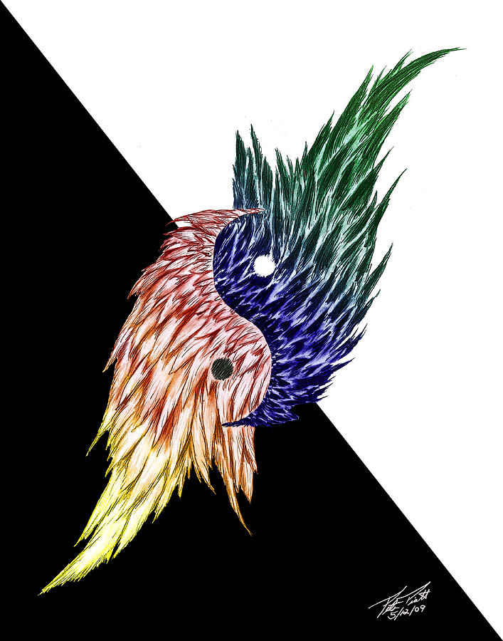 Feathers Drawing - Feathered Ying Yang  by Peter Piatt