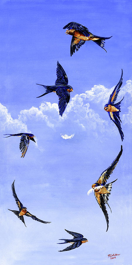 Barn Swallows Painting - Feathers by Robert M Walker