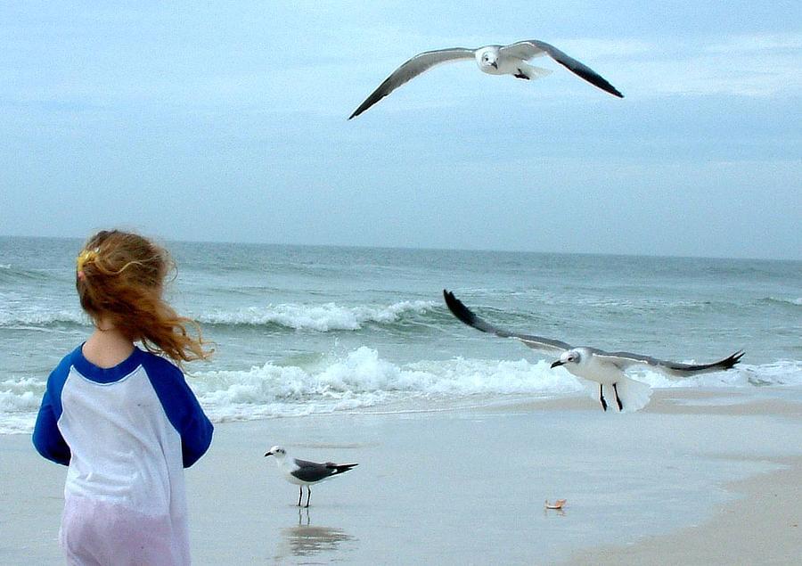 Feed The Birds Photograph by Cora Busch