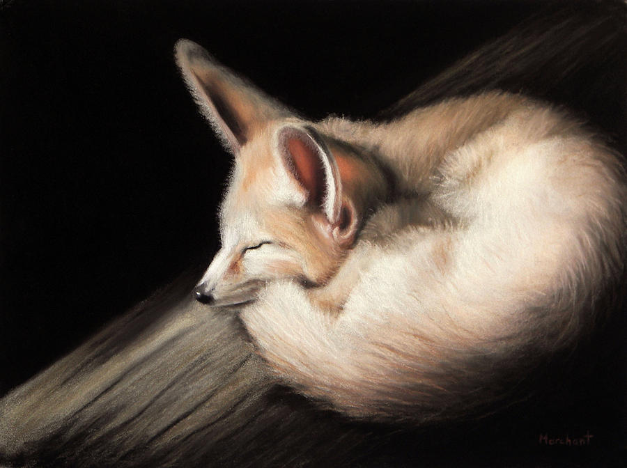 Fox Painting - Fennec Fox by Linda Merchant