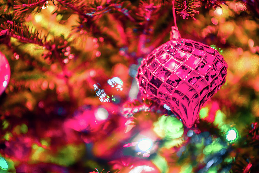 Christmas Tree Photograph - Festive Christmas Tree With Lights And Decorations by Alex Grichenko
