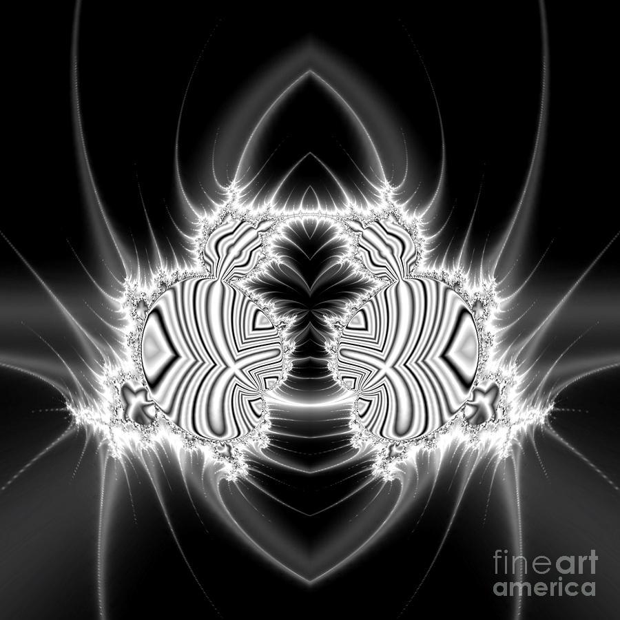 Fibonacci Beetle  Digital Art by Chaos Fractals