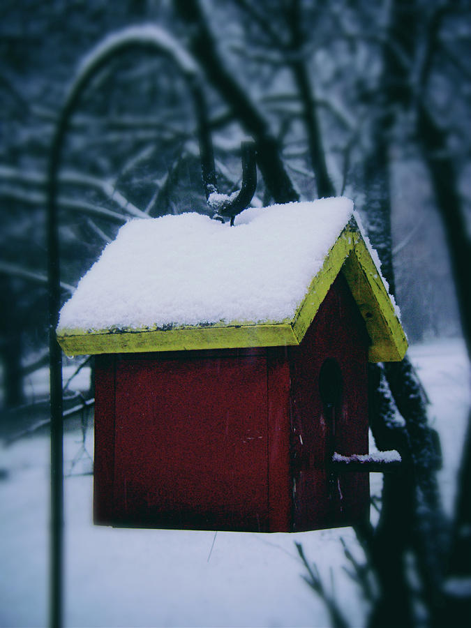 Snow Photograph - First Snow on the Roof by Frank J Casella