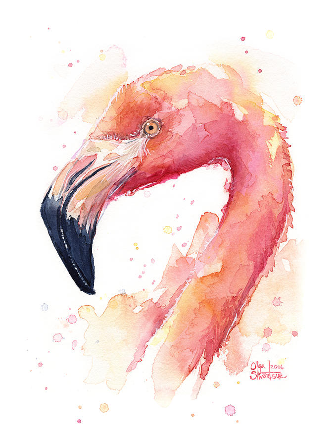 Flamingo Watercolor Painting By Olga Shvartsur