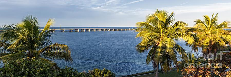 Florida Keys Photograph - Florida Keys by Elena Elisseeva
