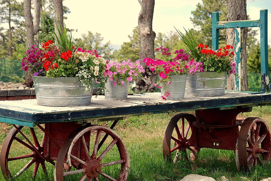 Flower Photograph - Flower Wagon by Susanne Van Hulst