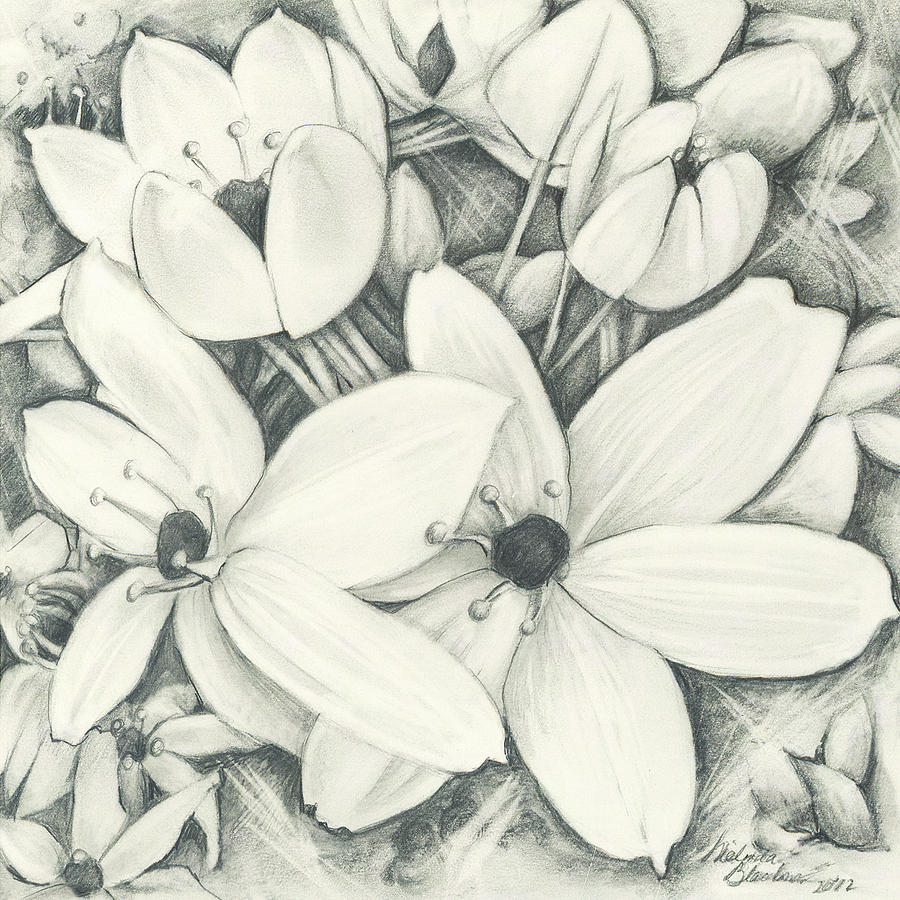 Flowers Pencil by Melinda Blackman