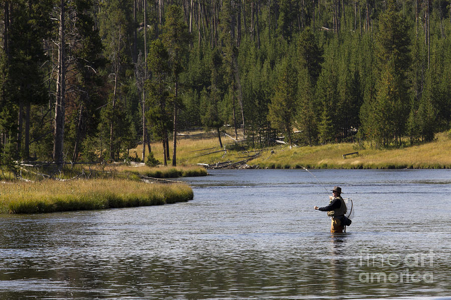 Fly Fishing Photograph - Fly Fishing In The Firehole River Yellowstone by Dustin K Ryan