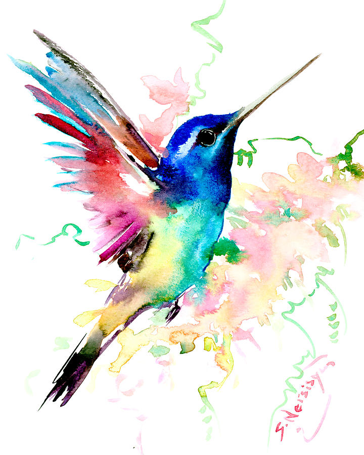 Hummingbird Drawings Step By Step: Flying Hummingbird Painting By Suren Nersisyan