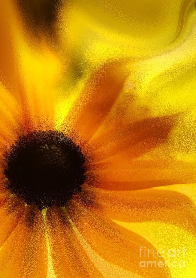 Follow The Sun by Arthur Miller
