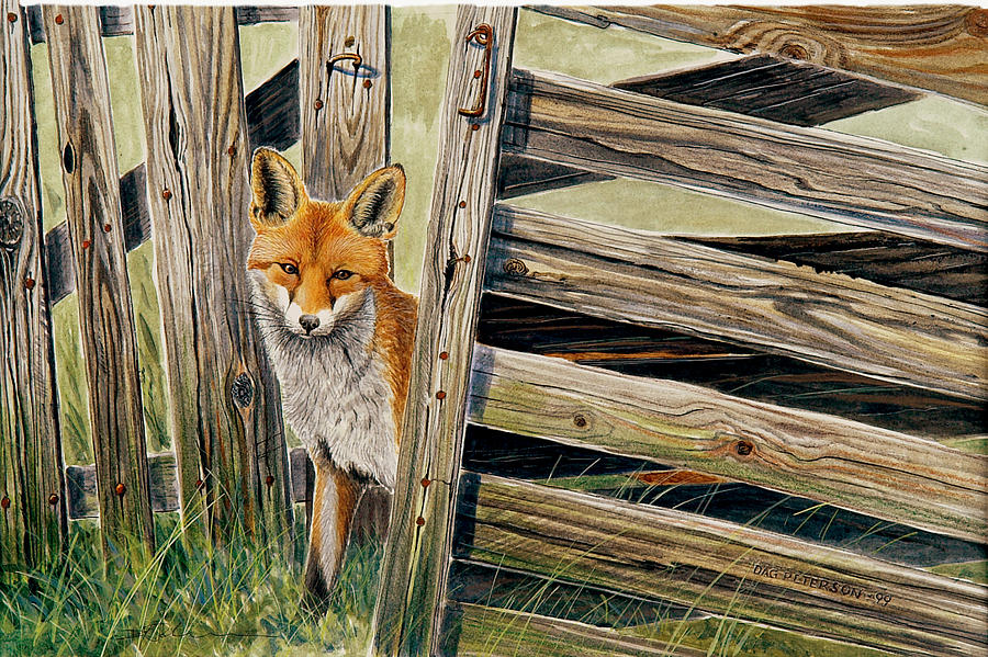 Red Fox Painting - Fox At The Gate by Dag Peterson