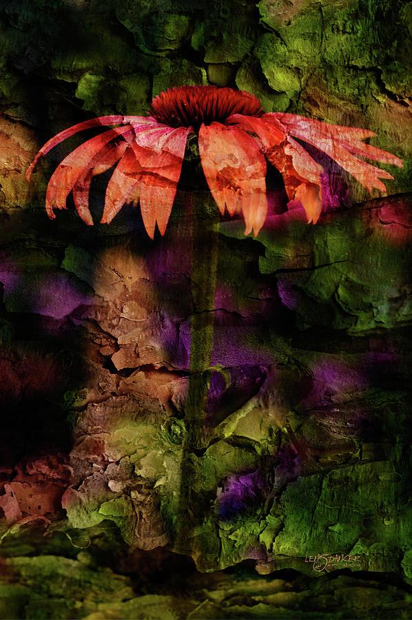 Echinacea Photograph - Fragmented Echinacea by Joy Gerow