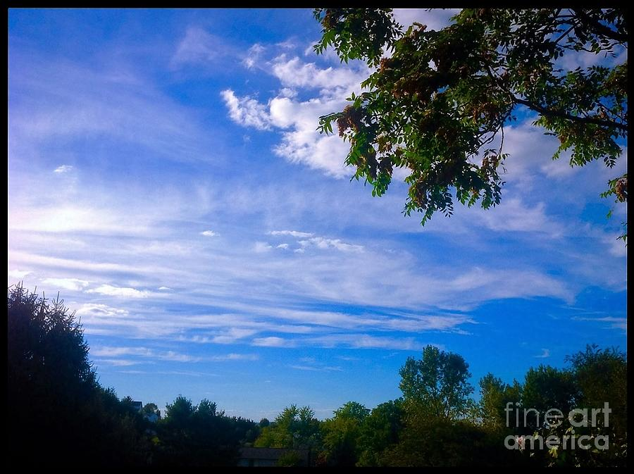 Nature Photograph - Frederick Maryland Countryside by Debra Lynch