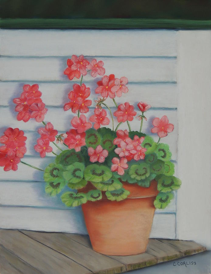 Front Porch Geraniums by Carol Corliss
